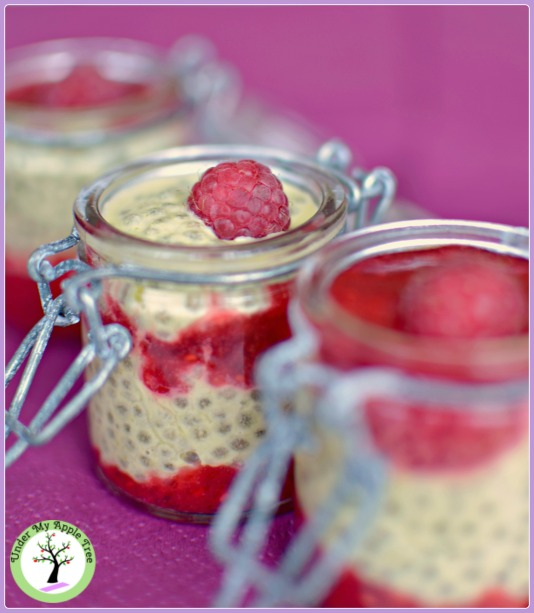 Pudding de chia pistache-framboise