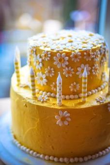 daisy-cake-861761_1920