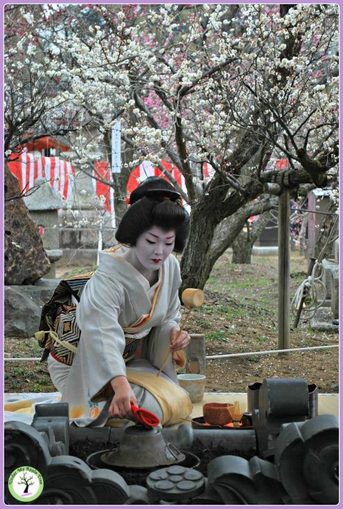 Maïko faisant chauffer l'eau au cours de la cérémonie du thé organisée lors du Baika-Sai au Kitano Temangu, Kyoto (2011)
